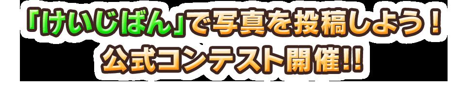 「けいじばん」で写真を投稿しよう!公式コンテスト開催!!