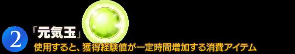 (2)「元気玉」使用すると、獲得経験値が一定時間増加する消費アイテム