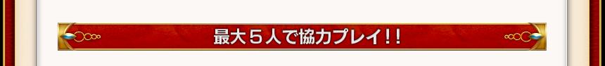 最大5人で協力プレイ!!